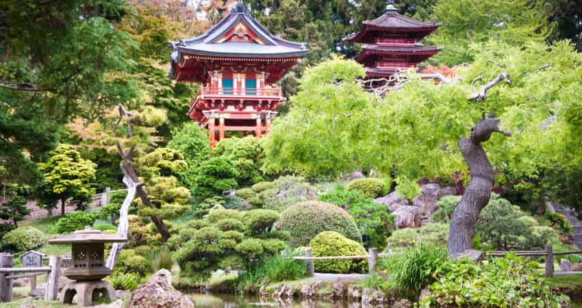 Traditional Japanese building surrounded by beautiful trees in San Francisco's Japanese Tea Garden.