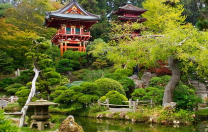 golden gate park's japanese tea garden, with small buildings and ponds surrounded by greenery